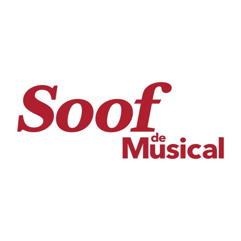 Paul muzikaal leider van Soof! de musical tot medio april te zien